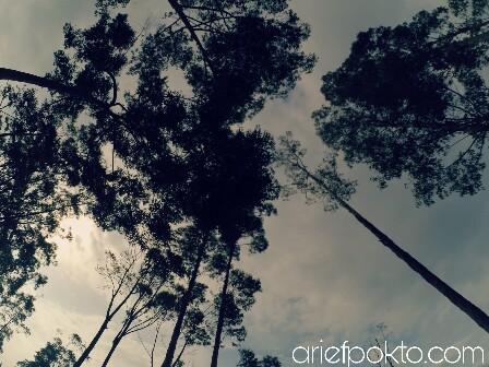 PicsArt_05-18-10.38.23.jpg
